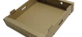 Fábrica de caixas de papelão personalizadas sp